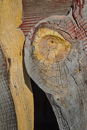Weathered barn wood shows worn red paint and large knot and split in grain. Stock Photo