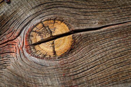 barnwood: Madera resistida granero muestra desgastada pintura roja y nudo grande y dividida en grano.