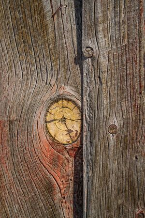Weathered barn wood shows worn red paint and large knot in grain. Stock Photo
