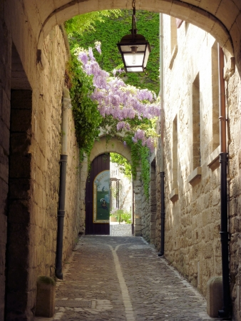 french way: Beautiful walkway in St Remy