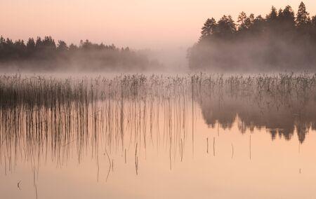Misty dawn at a lake