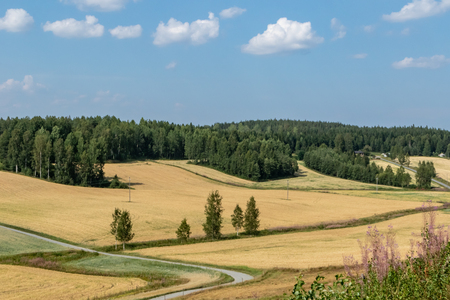 Field landscape in central Finland Stock Photo