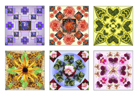 Set of six floral squares made of natural flowers in pastel colors photo