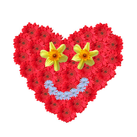 Flower heart made of cutout red gerbera daisies, smiling face with corn flowers and narcissus, isolated on white background