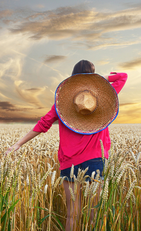 Girl, with mexican hat, in the cornfield, back side view photo