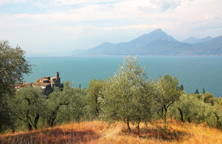 View to village pai, olive grove and garda lake, italy  photo