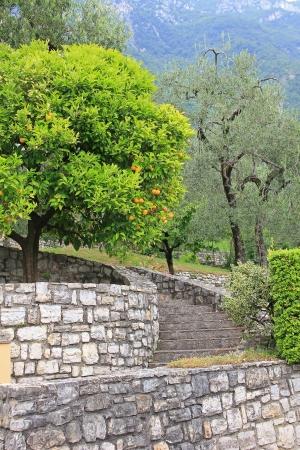 frontyard: Frontyard with stairs, mediterranean style, italy  Stock Photo
