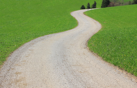 winding country road and green grass photo