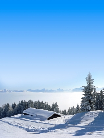 Picturesque winter landscape in the morning and blue sky with copy space, austrian alps   photo