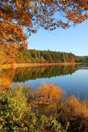 단풍 색의 아름 다운 무어 호수, 바이에른 풍경 스톡 콘텐츠
