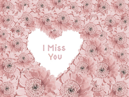 i miss you: light pink gerber daisies with heart shaped copy space and text - I miss you