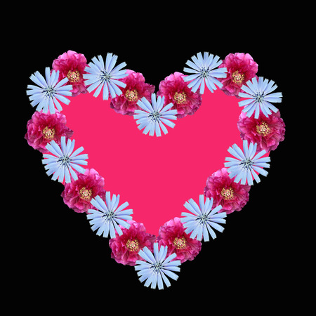 flower heart with pink copy space, on black background