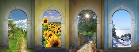 Four seasons collage - bogland, sunflowers, alley, winter wonderland  Stockfoto