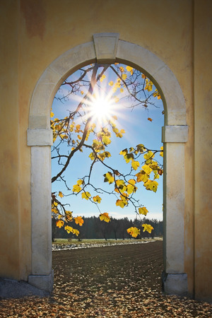 view through door: View through arched door, autumnal scenery with bright sunshine and maple leaves  Stock Photo