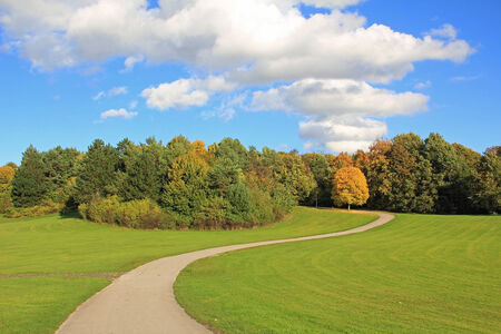 Winding walkway in autumnal park landscape, cloudy sky  photo