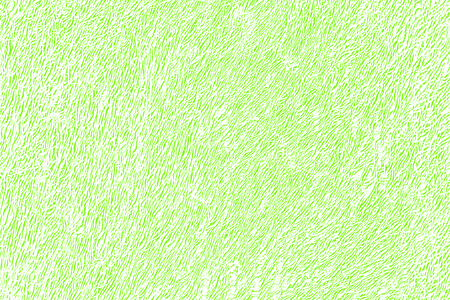sparkled: green design paper structure  Stock Photo