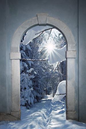 겨울 숲을 볼 수있는 빈티지 아치형 문