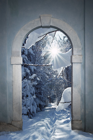 vintage arched door with view to wintry forest  Stockfoto