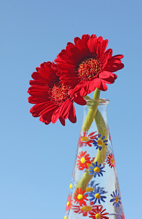 two red gerber daisies in a hand painted glass vase, against blue sky photo