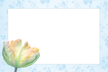 nostalgic floral frame with beautiful tulip flower, light blue and yellow