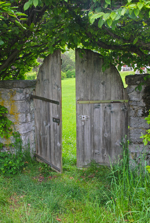 arched garden door, framed with beech hedge and green leaves Stock Photo