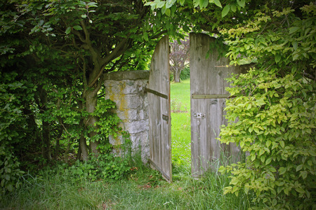 arched garden door, framed with beech leaves Standard-Bild