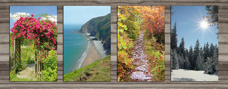 Collage - four seasons on wooden board background. rambler rose arch, coastal landscape, alpine hiking trail in autumn, wintry forest glade. photo