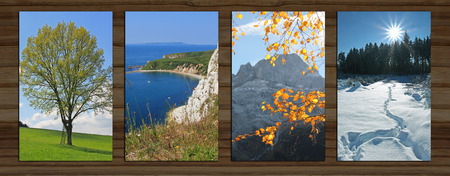 wooden background with four seasons landscape. lime tree in spring, coastal landscape, mountain and autumnal beech leaves, wintry forest photo