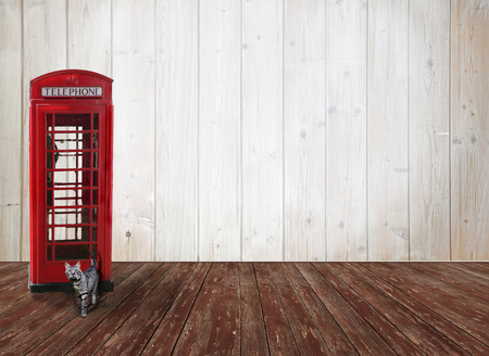 nostalgic wooden background with red british phone box, tabby cat and copy space photo