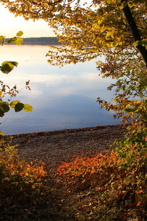 view through autumnal leaves -starnberg lake bavaria photo