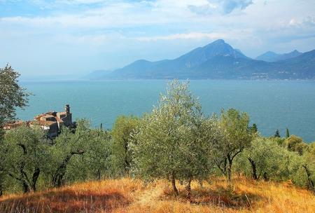 paisaje mediterraneo: vista al lago Garda y el pueblo pai, t�pico paisaje mediterr�neo con olivos
