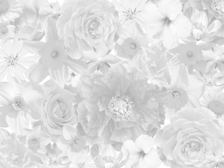 funeral: floral mourning background in black and white