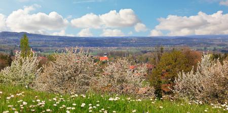alberi da frutto: paesaggio rurale primavera con alberi da frutto in fiore, colline bavaresi