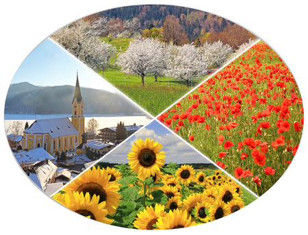 turn of the year: four seasons circle X - fruit orchard, poppy field, sunflowers, bavarian winter landscape Stock Photo
