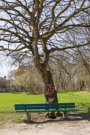 recess: tree in the park with painted valentine heart green bench place for lovers