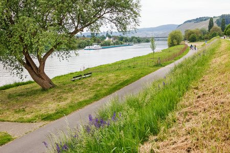 bikeway: bikeway at the riverside of River Moselle Germany