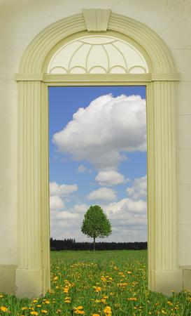 view through door: view through arched door, dandelion meadow with lonely tree