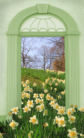view through door: view through arched door, springtime landscape with wild narcissus Stock Photo
