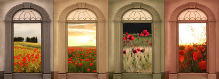 vintage archways in soft browns, landscape with red poppies