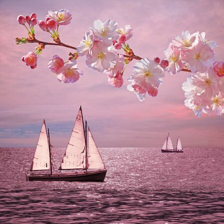 water scape: dreamy sunset ocean with sailboats, blooming cherry twig
