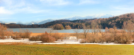 bird sanctuary: natural landscape with bird sanctuary, seehamer see, bavaria