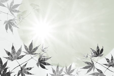 branch with maple leaves and rays of hope, sympathy background