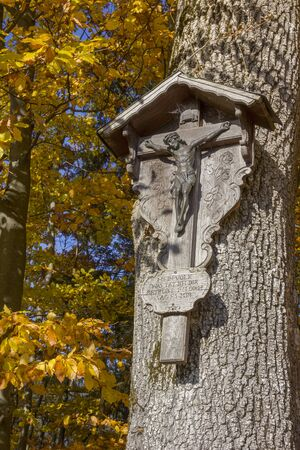 woodcraft: woodcraft - christian wayside shrine on a beech tree with colorful leaves
