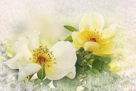 Gelber Hund Rosen, Blumenkartenentwurf mit Rahmen Textur