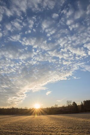 fleecy: sunrise over the frosty field, blue sky with beautiful fleecy clouds