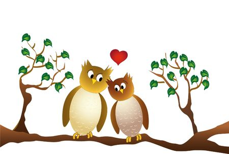 amorous: two amorous owls sitting on a branch, isolated on white background.