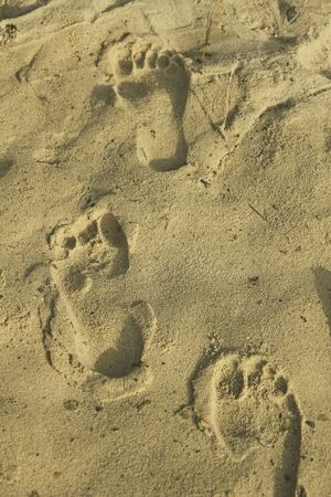 footprints in the sand: barefoot footprints at the sandy beach