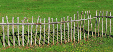paling: paling fence made of wooden sticks, green pasture Stock Photo