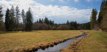 meandering: stream valley with meandering brook, springtime landscape