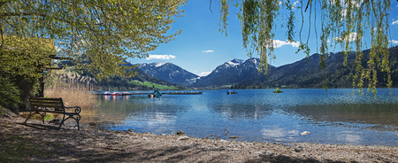 pictorial: pictorial lake shore schliersee with resting bench, view through willow branches. Bavarian spring landscape